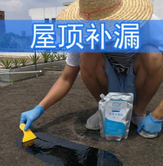 聚氨酯防水涂料屋顶补漏胶防水补漏材料房顶楼顶裂缝沥青胶1kg