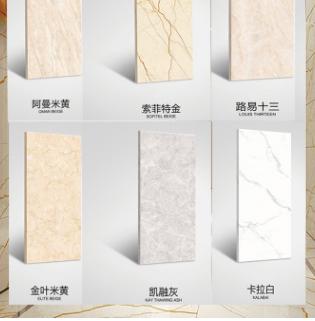 400*800负离子中板瓷砖 客厅内墙砖索菲特金卡拉白通体大理石瓷砖