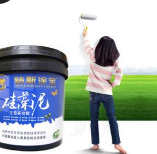 厂家直销钻斯涂宝硅藻泥生态多功能品牌环保防火防水涂料分销加盟