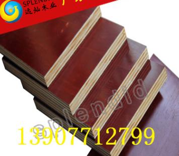 厂家热销7层11mm防水胶合板 胶合板多层板 建筑模板