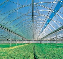 种植场、种植园屋面瓦 新型环保建材 美观耐用 施工简单